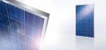 Solar modules Yingli YL-серия от 210 Wp до 275 Wp от 3к солар варна